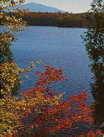 Local Adirondack Lakes provide wonderful recreation activities nearby to the Adirondack Cabin for Rent.